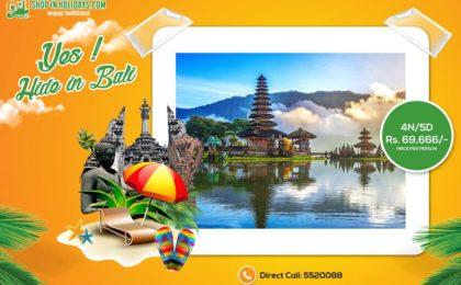 bali trip-shopin-holidays